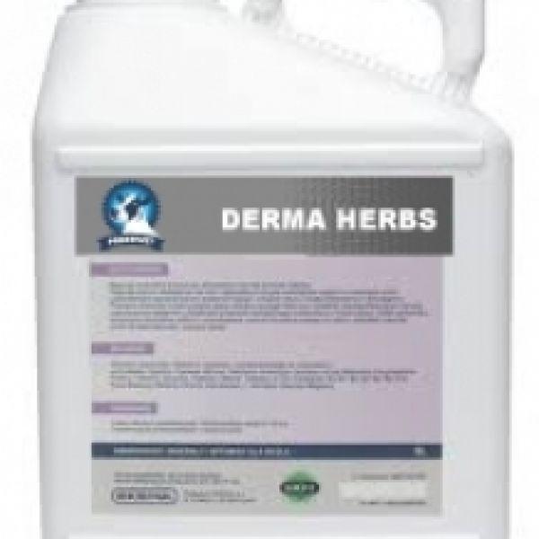 DERMA HERBS